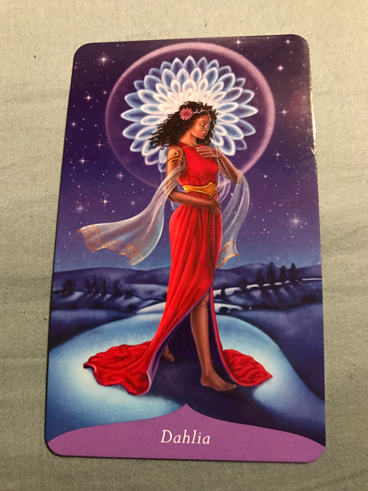 Attend To The Shadow – Oracle Reading for November